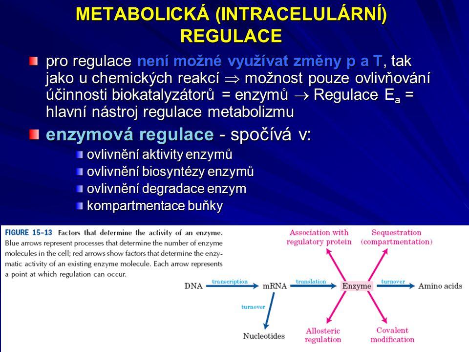 METABOLICKÁ (INTRACELULÁRNÍ) REGULACE pro regulace není možné využívat změny p a T, tak jako u chemických reakcí  možnost pouze ovlivňování účinnosti