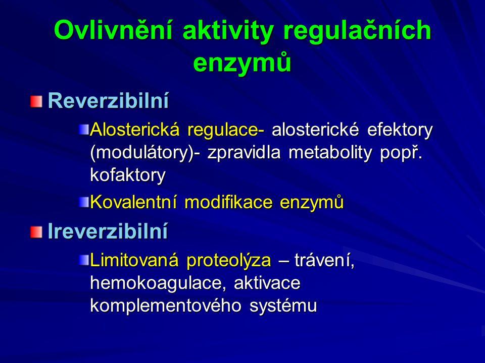Ovlivnění aktivity regulačních enzymů Reverzibilní Alosterická regulace- alosterické efektory (modulátory)- zpravidla metabolity popř. kofaktory Koval