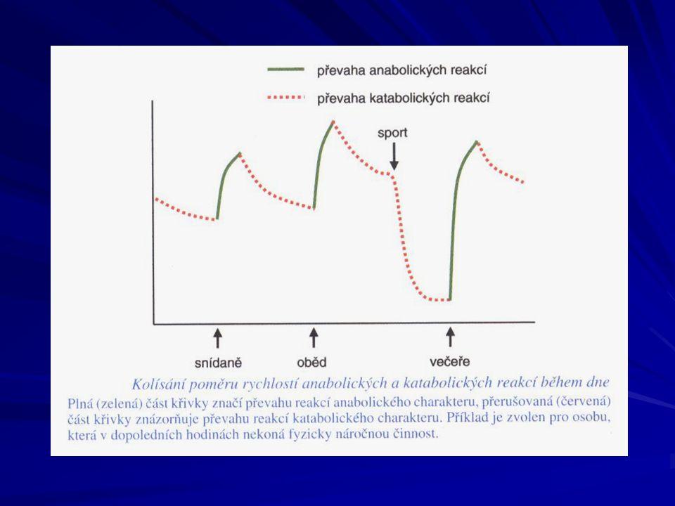 Adaptivní regulace Umožňuje adaptaci organizmu na změny ve vnějším prostředí Připravení organizmu v předstihu na působení změn ve vnějším prostředí (anticipace, stresová reakce- glykémie  )