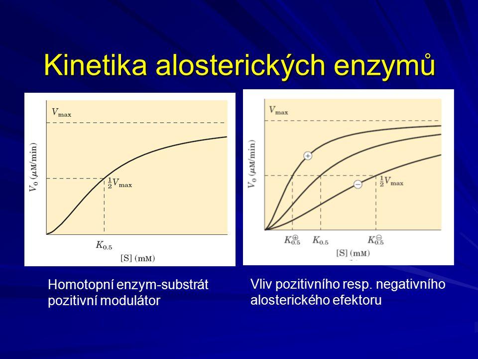 Kinetika alosterických enzymů Homotopní enzym-substrát pozitivní modulátor Vliv pozitivního resp. negativního alosterického efektoru