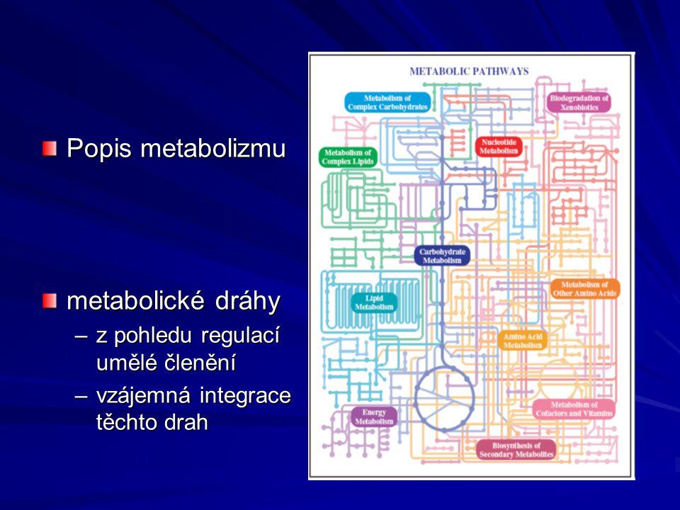 Popis metabolizmu metabolické dráhy –z pohledu regulací umělé členění –vzájemná integrace těchto drah
