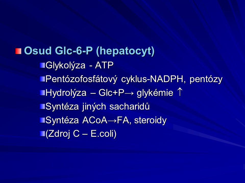 Osud Glc-6-P (hepatocyt) Glykolýza - ATP Pentózofosfátový cyklus-NADPH, pentózy Hydrolýza – Glc+P→ glykémie  Syntéza jiných sacharidů Syntéza ACoA→FA
