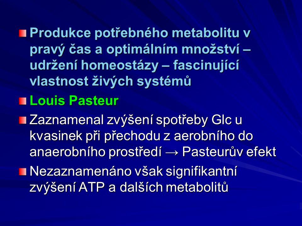 Produkce potřebného metabolitu v pravý čas a optimálním množství – udržení homeostázy – fascinující vlastnost živých systémů Louis Pasteur Zaznamenal