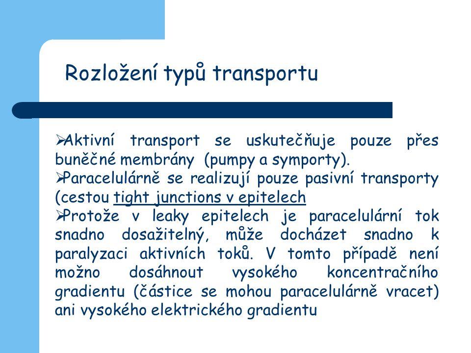  Aktivní transport se uskutečňuje pouze přes buněčné membrány (pumpy a symporty).  Paracelulárně se realizují pouze pasivní transporty (cestou tight