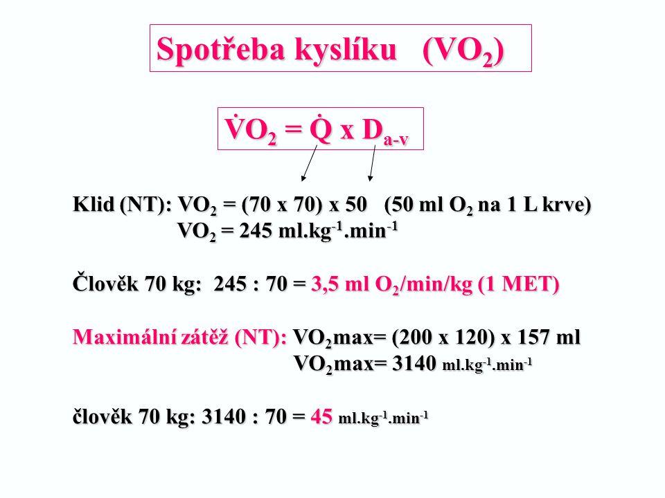 Spotřeba kyslíku (VO 2 ) Klid (NT): VO 2 = (70 x 70) x 50 (50 ml O 2 na 1 L krve) VO 2 = 245 ml.kg -1.min -1 VO 2 = 245 ml.kg -1.min -1 Člověk 70 kg: