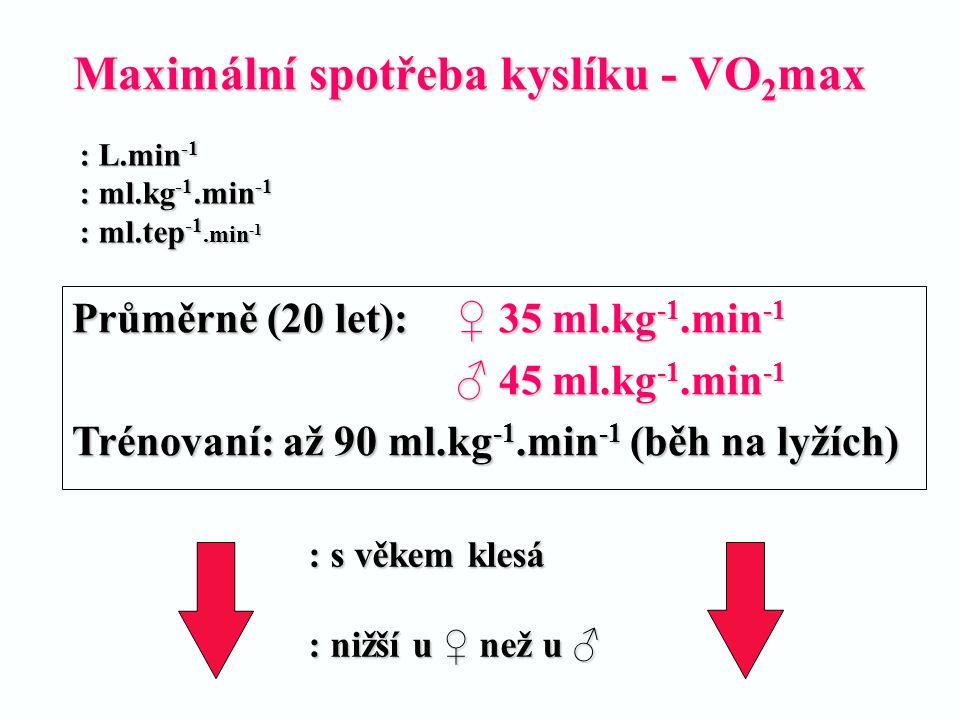 Maximální spotřeba kyslíku - VO 2 max Průměrně (20 let): ♀ 35 ml.kg -1.min -1 ♂ 45 ml.kg -1.min -1 Trénovaní: až 90 ml.kg -1.min -1 (běh na lyžích) :