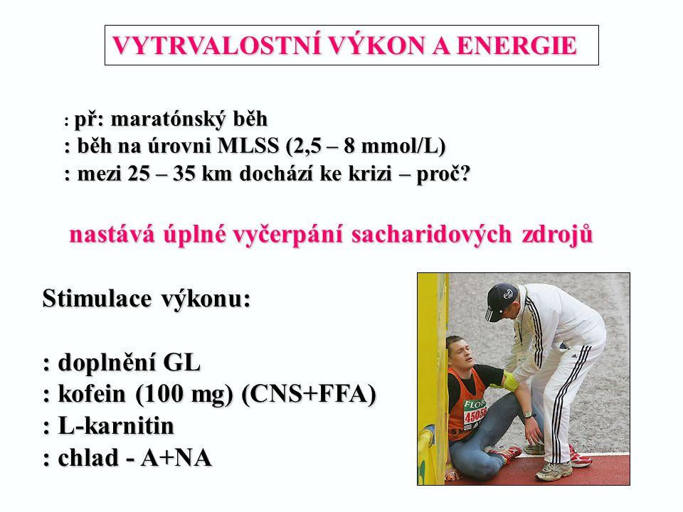 VYTRVALOSTNÍ VÝKON A ENERGIE př: maratónský běh : př: maratónský běh : běh na úrovni MLSS (2,5 – 8 mmol/L) : mezi 25 – 35 km dochází ke krizi – proč?
