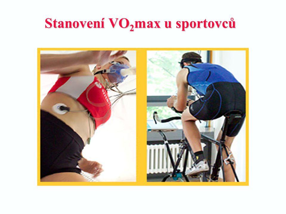 Stanovení VO 2 max u sportovců