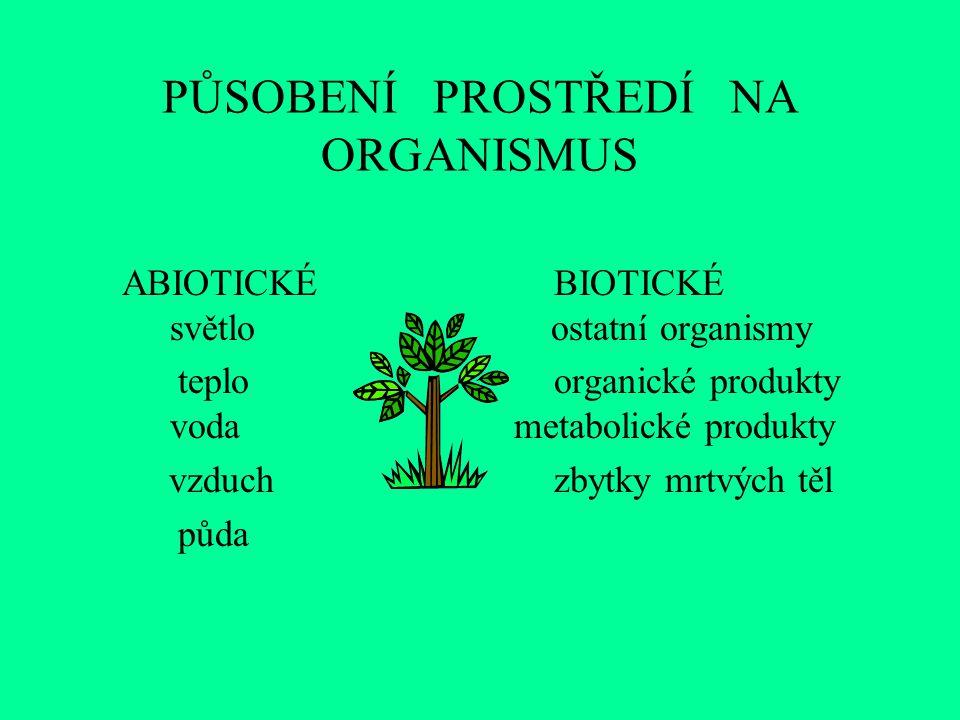 PŮSOBENÍ PROSTŘEDÍ NA ORGANISMUS ABIOTICKÉBIOTICKÉ světlo ostatní organismy teploorganické produkty voda metabolické produkty vzduchzbytky mrtvých těl půda