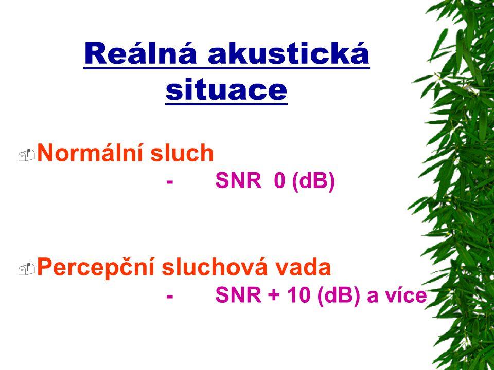 Reálná akustická situace  Normální sluch - SNR 0 (dB)  Percepční sluchová vada - SNR + 10 (dB) a více