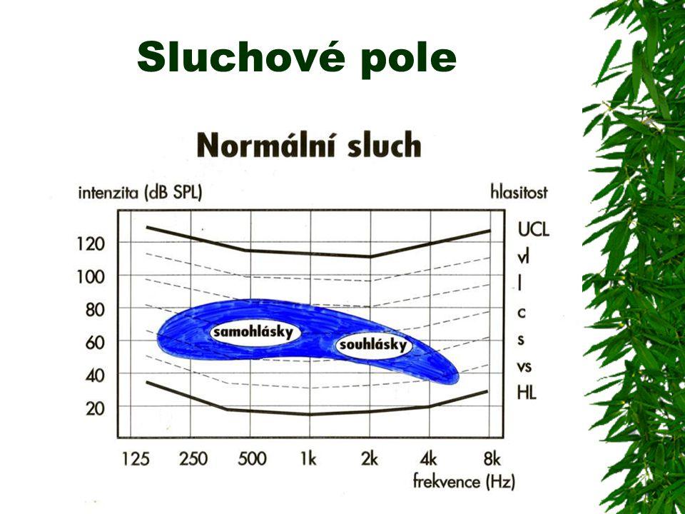 Možná řešení (4)  Zvýšit poměr signál–šum (SNR)  - Změnit reálnou poslechovou situaci - obvykle obtížně realizovatelné  - Zvýšit SNR ve výstupním signálu sluchadla - časový a spektrální kontrast - směrový mikrofonní režim