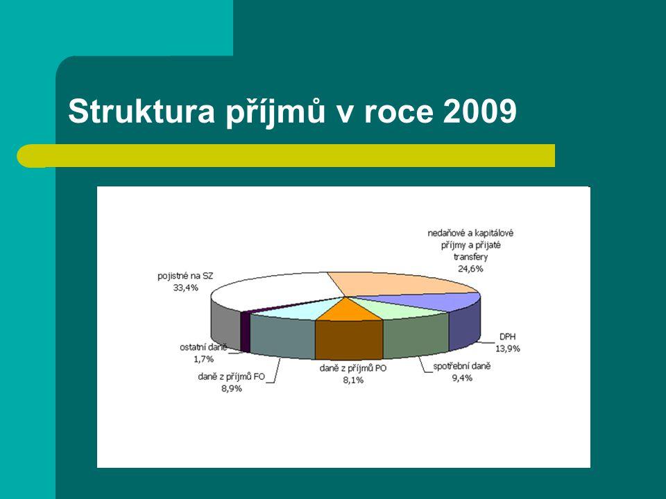Struktura příjmů v roce 2009