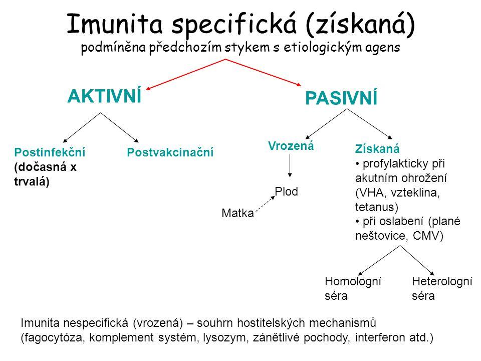 Imunita specifická (získaná) podmíněna předchozím stykem s etiologickým agens AKTIVNÍ PASIVNÍ Postinfekční (dočasná x trvalá) Postvakcinační Vrozená Získaná profylakticky při akutním ohrožení (VHA, vzteklina, tetanus) při oslabení (plané neštovice, CMV) Homologní séra Heterologní séra Plod Matka Imunita nespecifická (vrozená) – souhrn hostitelských mechanismů (fagocytóza, komplement systém, lysozym, zánětlivé pochody, interferon atd.)