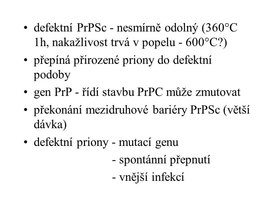 defektní PrPSc - nesmírně odolný (360°C 1h, nakažlivost trvá v popelu - 600°C?) přepíná přirozené priony do defektní podoby gen PrP - řídí stavbu PrPC