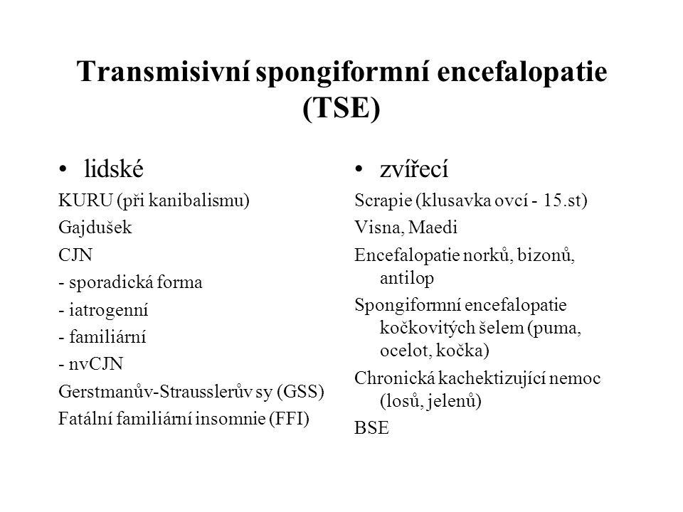 Vývoj epizoocie BSE 1985 1.