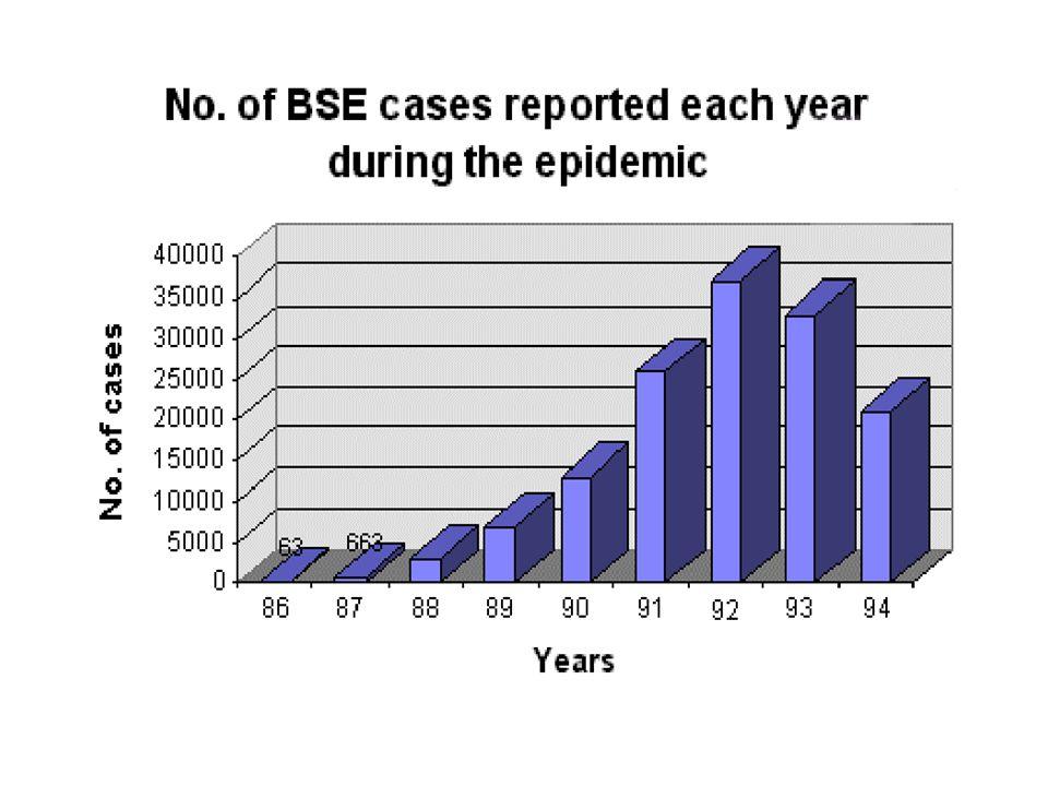 epizoocie BSE - hypotézy .