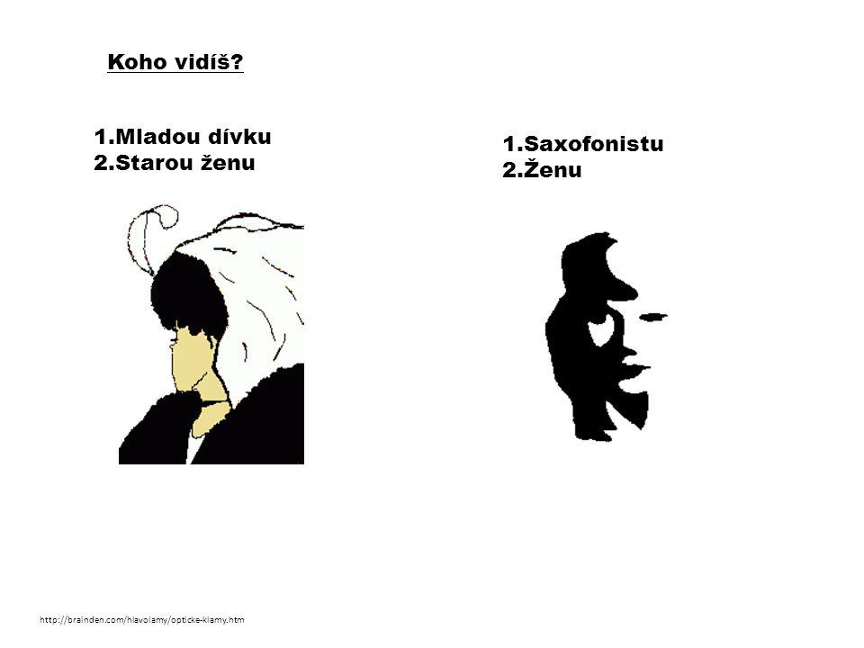 Koho vidíš? 1.Mladou dívku 2.Starou ženu 1.Saxofonistu 2.Ženu http://brainden.com/hlavolamy/opticke-klamy.htm