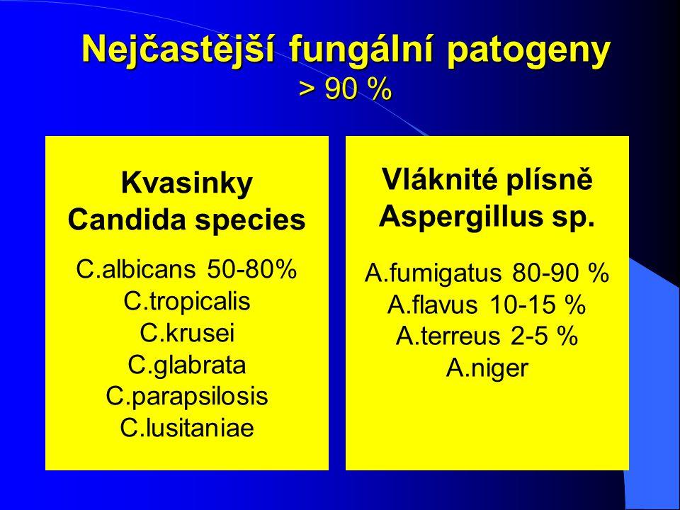 Nejčastější fungální patogeny > 90 % Kvasinky Candida species C.albicans 50-80% C.tropicalis C.krusei C.glabrata C.parapsilosis C.lusitaniae Vláknité