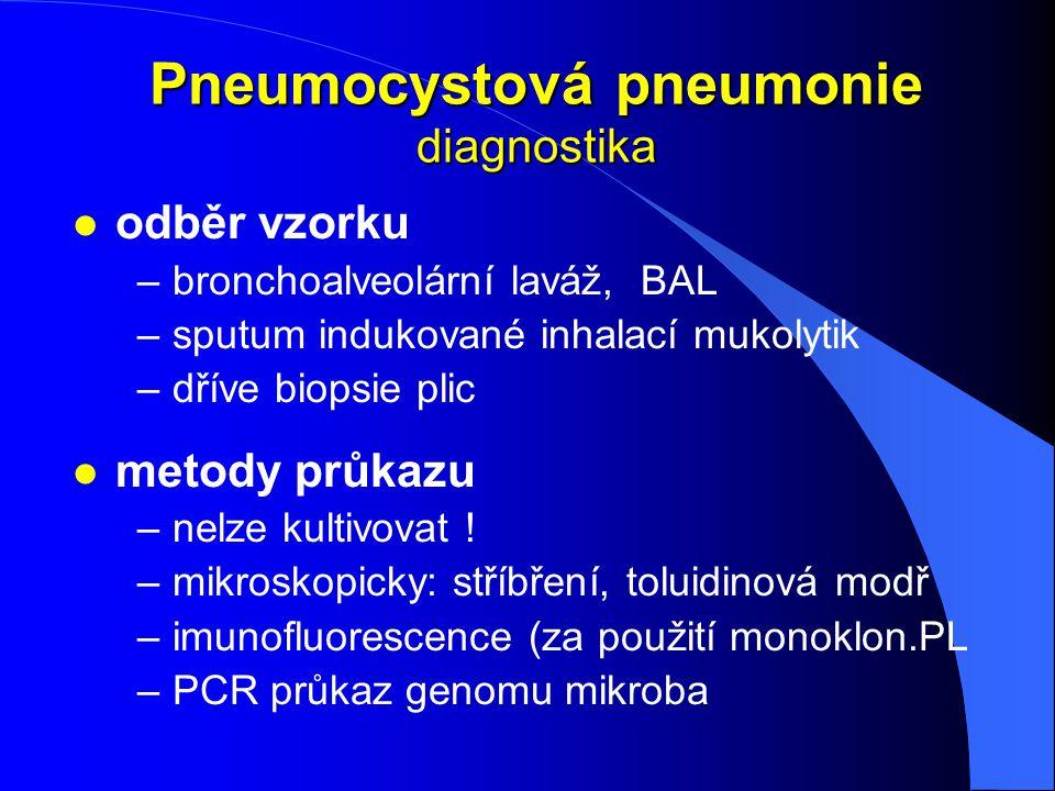 Pneumocystová pneumonie diagnostika l odběr vzorku –bronchoalveolární laváž, BAL –sputum indukované inhalací mukolytik –dříve biopsie plic l metody pr
