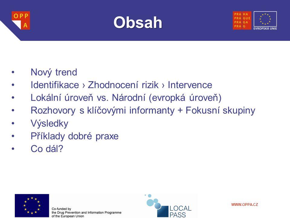WWW.OPPA.CZ Risk assessment – zhodnocení rizik (výsledky)  Fokusní skupina –Systém který by navazoval na tzv.