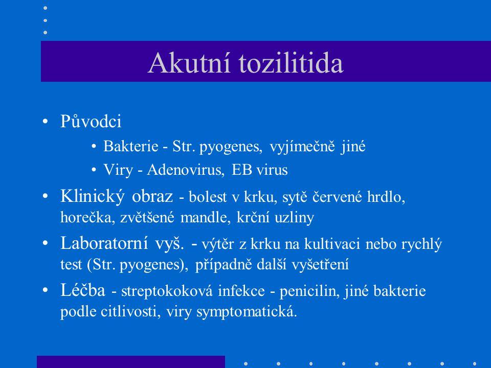 Akutní tozilitida Původci Bakterie - Str.