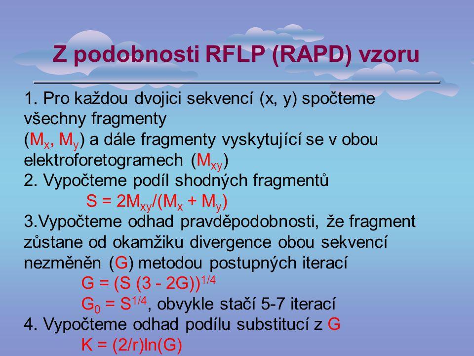 Z podobnosti RFLP (RAPD) vzoru 1.
