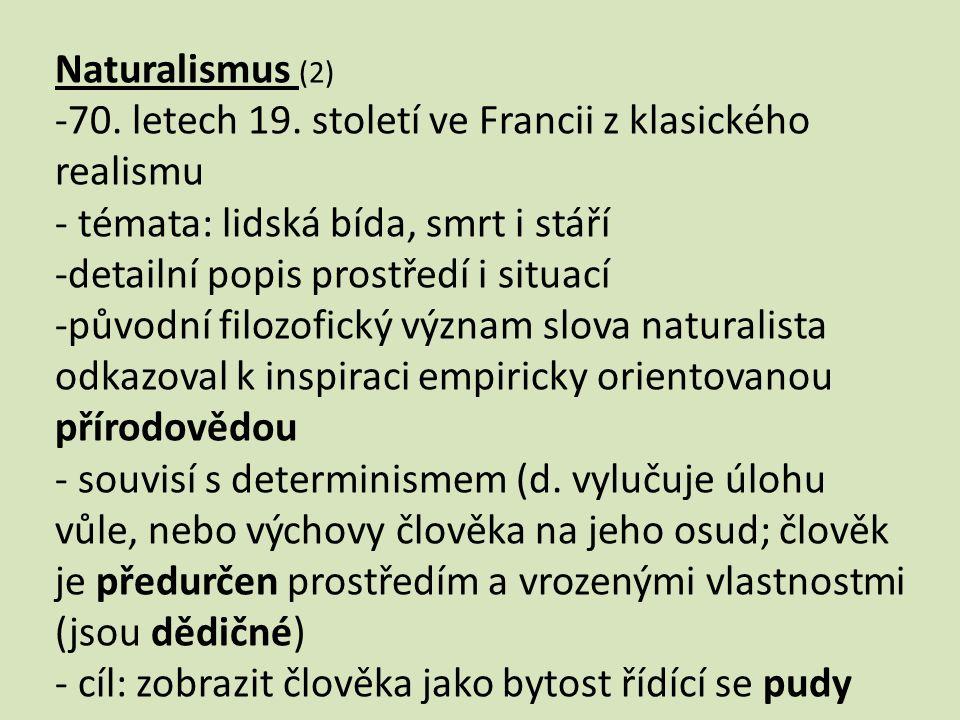 Naturalismus (2) -70. letech 19.
