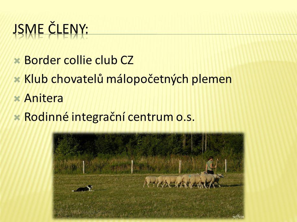  Border collie club CZ  Klub chovatelů málopočetných plemen  Anitera  Rodinné integrační centrum o.s.