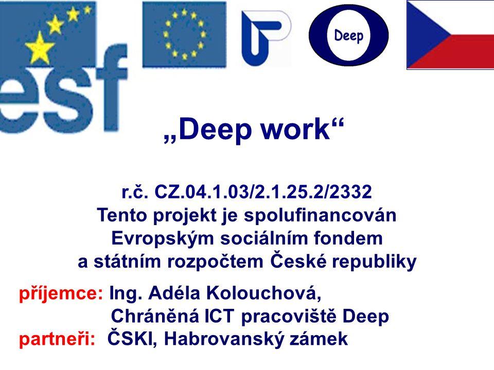 """r.č. CZ.04.1.03/2.1.25.2/2332 Tento projekt je spolufinancován Evropským sociálním fondem a státním rozpočtem České republiky """"Deep work"""" příjemce: In"""