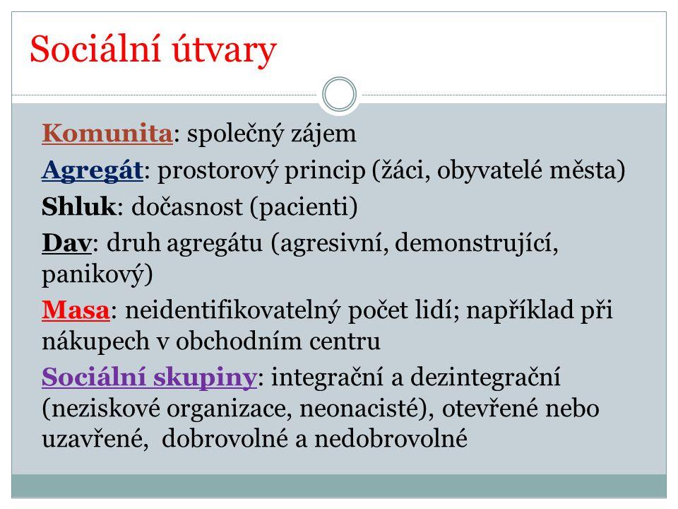 Literatura DVOŘÁK, Jan a kol.Odmaturuj ze společenských věd.