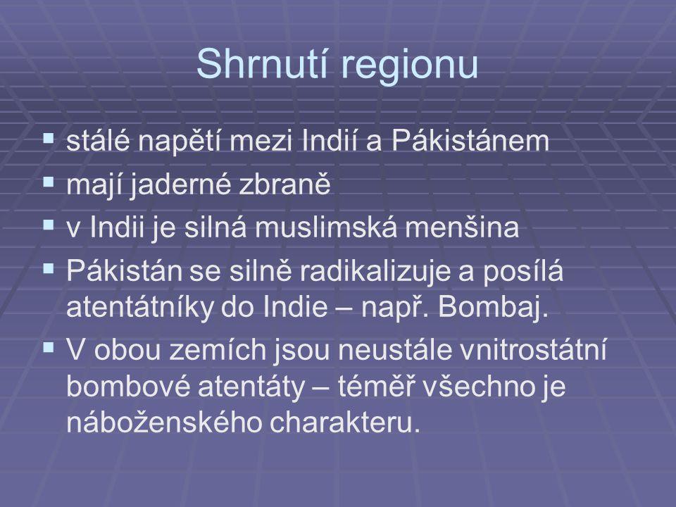 Shrnutí regionu   stálé napětí mezi Indií a Pákistánem   mají jaderné zbraně   v Indii je silná muslimská menšina   Pákistán se silně radikalizuje a posílá atentátníky do Indie – např.