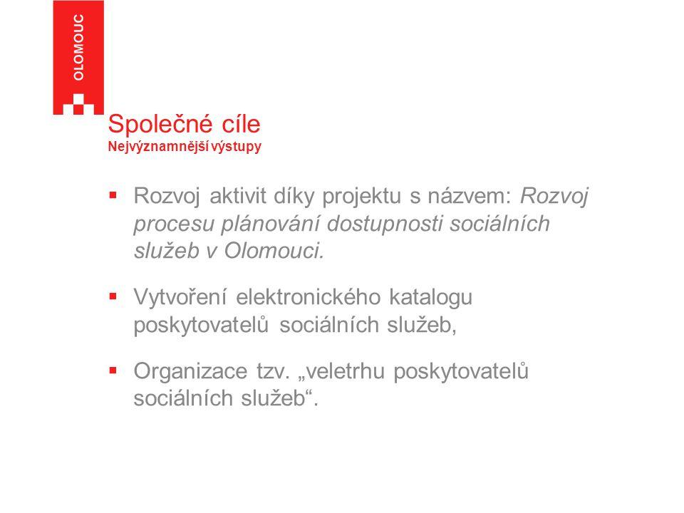 Společné cíle Nejvýznamnější výstupy  Rozvoj aktivit díky projektu s názvem: Rozvoj procesu plánování dostupnosti sociálních služeb v Olomouci.  Vyt
