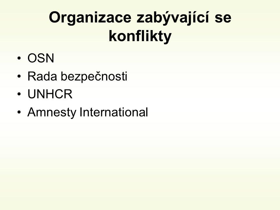 Organizace zabývající se konflikty OSN Rada bezpečnosti UNHCR Amnesty International
