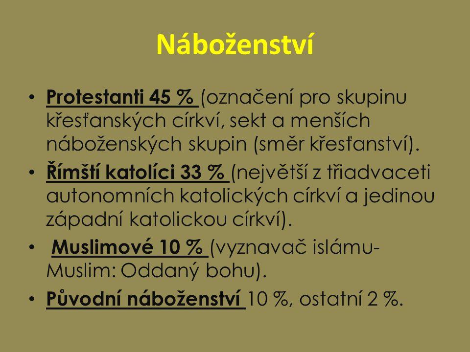 Náboženství Protestanti 45 % (označení pro skupinu křesťanských církví, sekt a menších náboženských skupin (směr křesťanství). Římští katolíci 33 % (n