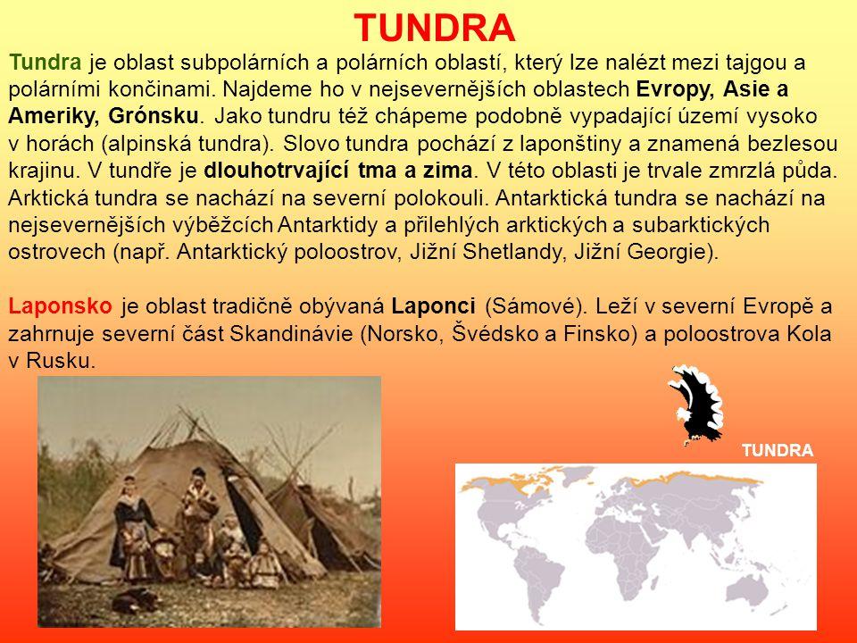 TUNDRA Tundra je oblast subpolárních a polárních oblastí, který lze nalézt mezi tajgou a polárními končinami.