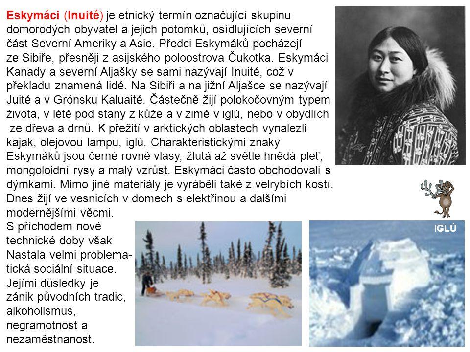 Eskymáci (Inuité) je etnický termín označující skupinu domorodých obyvatel a jejich potomků, osídlujících severní část Severní Ameriky a Asie.