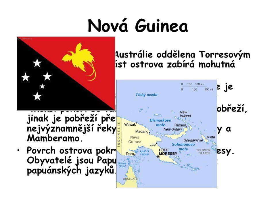 Nová Guinea Nová Guinea je od Austrálie oddělena Torresovým průlivem. Střední část ostrova zabírá mohutná Centrální vysočina. Nejvyšším vrcholem ostro