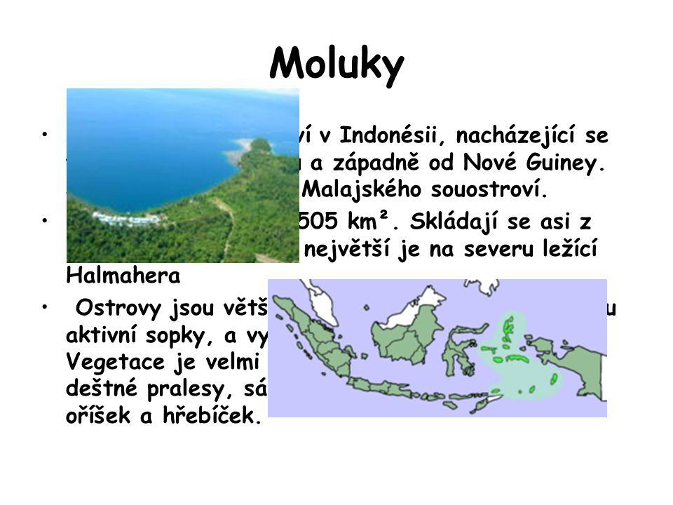 Moluky Moluky jsou souostroví v Indonésii, nacházející se východně od Celebesu a západně od Nové Guiney. Jsou součástí širšího Malajského souostroví.