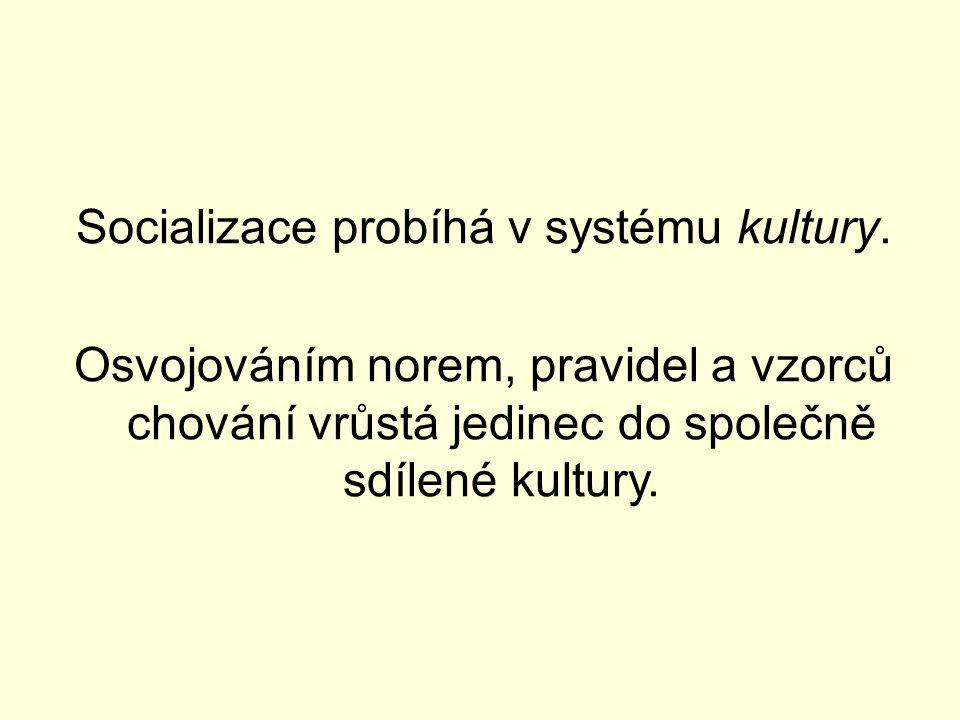 Socializace probíhá v systému kultury. Osvojováním norem, pravidel a vzorců chování vrůstá jedinec do společně sdílené kultury.