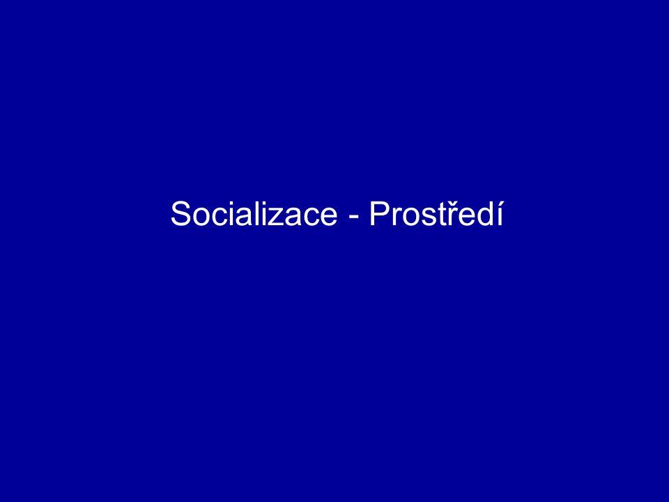 Socializace - Prostředí