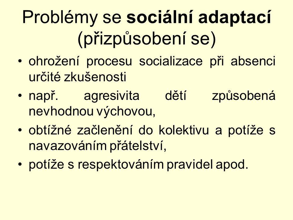 Problémy se sociální adaptací (přizpůsobení se) ohrožení procesu socializace při absenci určité zkušenosti např. agresivita dětí způsobená nevhodnou v