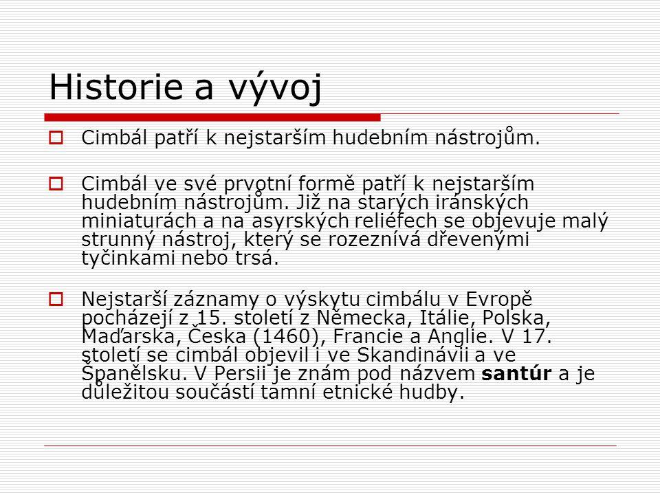Historie a vývoj  Po té, co se v 19.