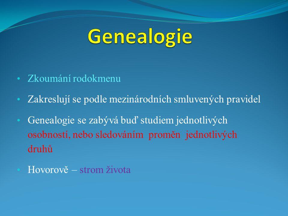 Zkoumání rodokmenu Zakreslují se podle mezinárodních smluvených pravidel Genealogie se zabývá buď studiem jednotlivých osobností, nebo sledováním prom