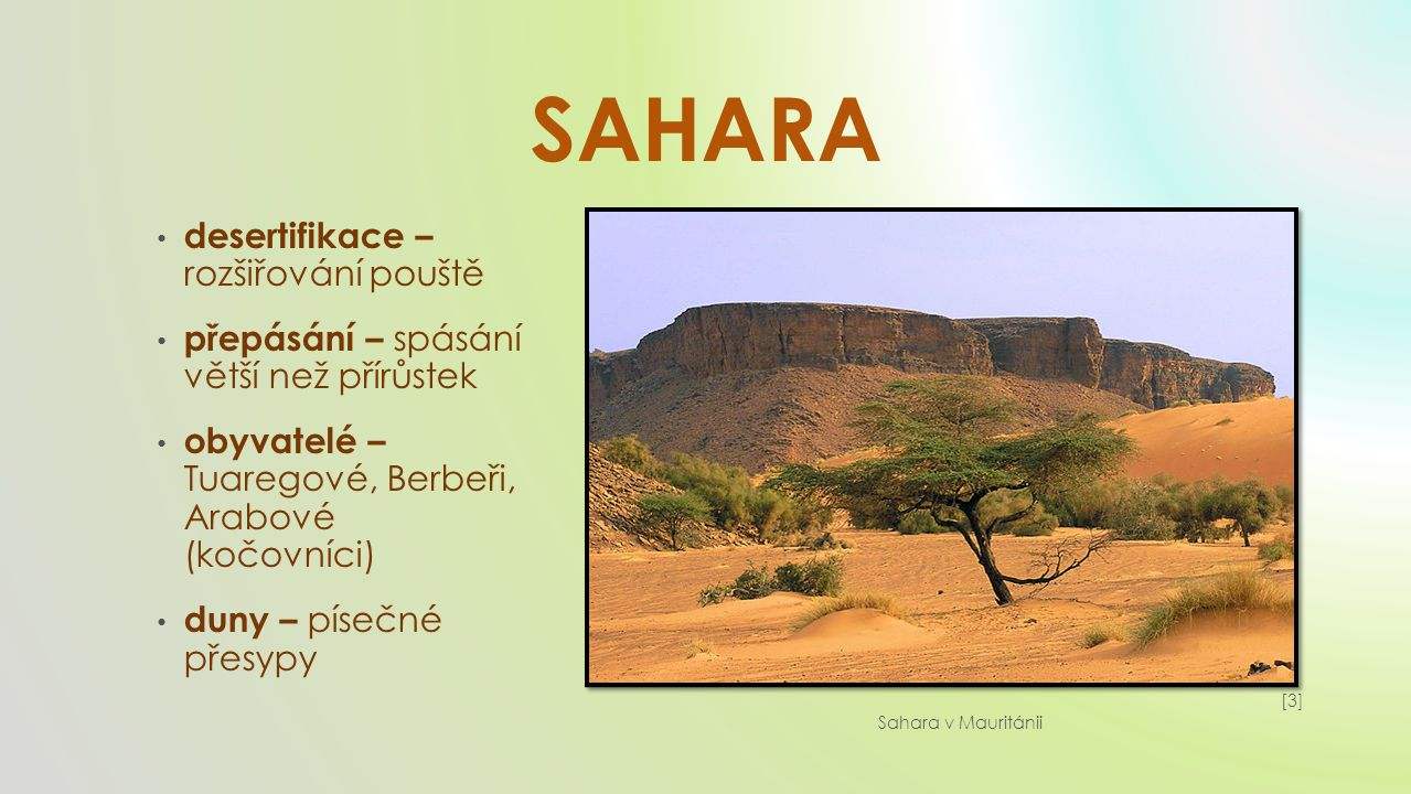 OÁZA říční studniční artéské datlové palmy, fíky, olivy, tamaryšky napajedla karavan [4][4] Oáza v Alžírsku