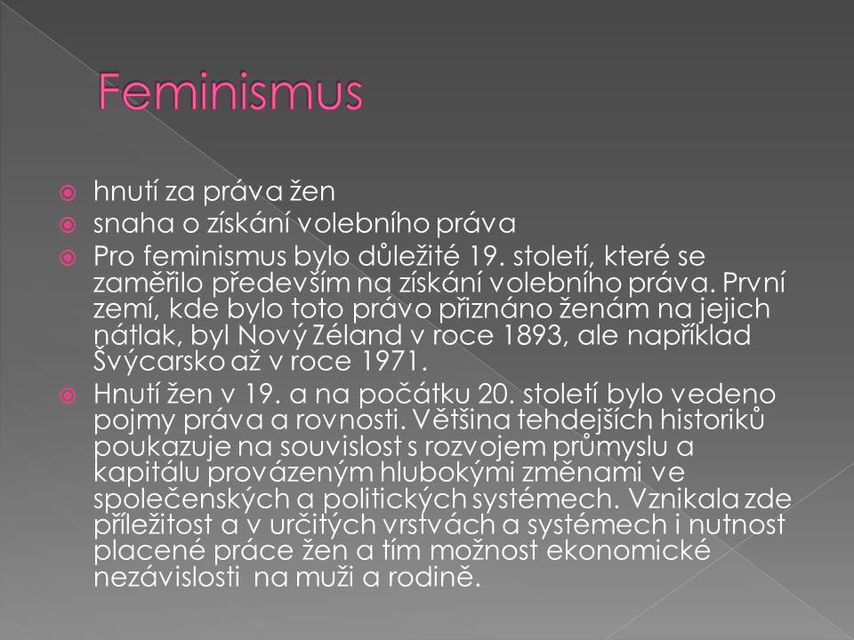  hnutí za práva žen  snaha o získání volebního práva  Pro feminismus bylo důležité 19.