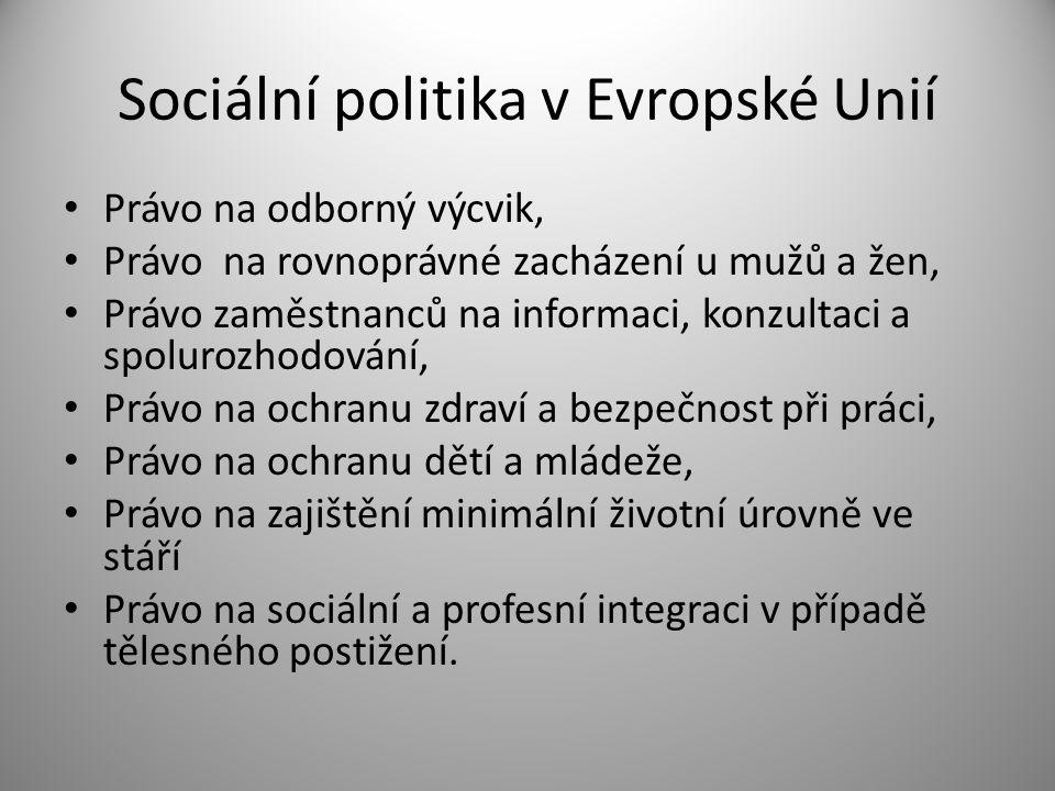 Sociální politika v Evropské Unií Základním kamenem sociální politiky ES je nediskriminace (rovnost mužů a žen, zákaz diskriminace na základě státní příslušnosti, barvy pleti, etnické příslušnosti, náboženství a přesvědčení, tělesného postižení, věku nebo sexuální orientace) a stanovení minimálních standardů (např.