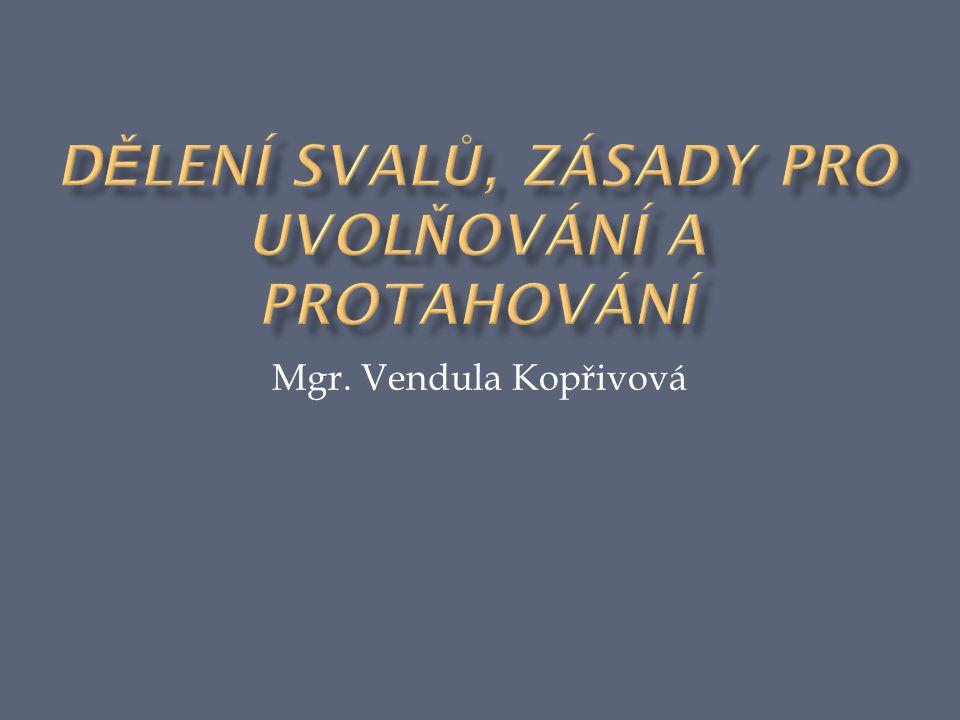 Mgr. Vendula Kopřivová