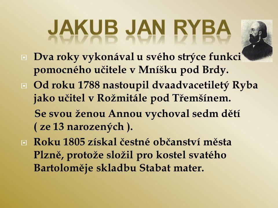  Dva roky vykonával u svého strýce funkci pomocného učitele v Mníšku pod Brdy.  Od roku 1788 nastoupil dvaadvacetiletý Ryba jako učitel v Rožmitále
