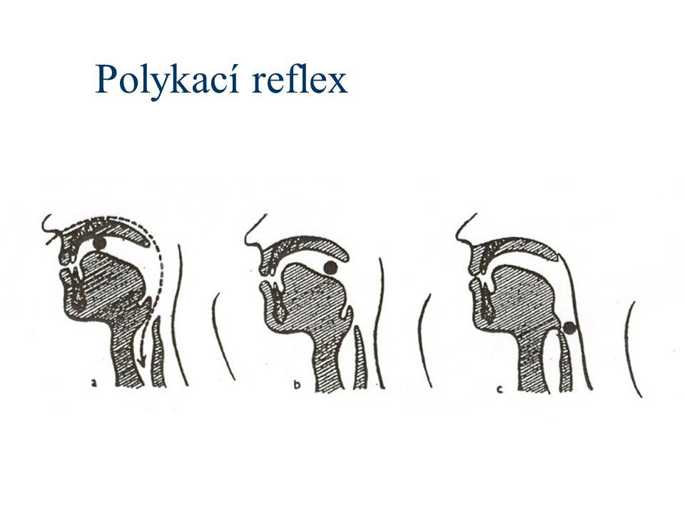Polykací reflex