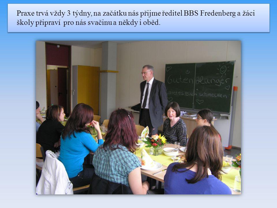 Praxe trvá vždy 3 týdny, na začátku nás přijme ředitel BBS Fredenberg a žáci školy připraví pro nás svačinu a někdy i oběd.